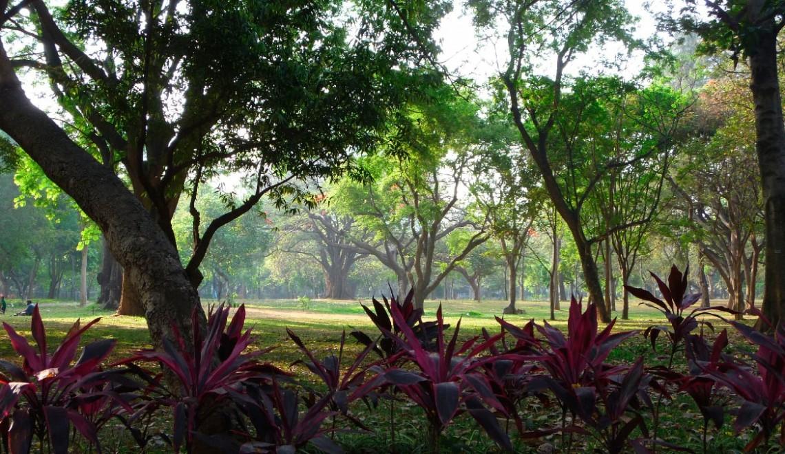 Jogging in India